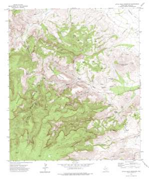 Little Aguja Mountain topo map