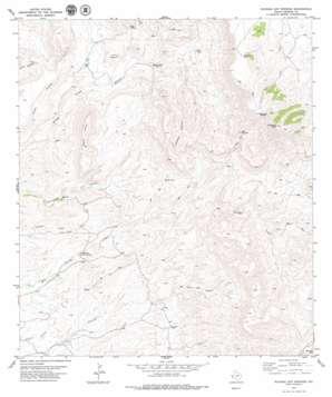 Ruidosa Hot Springs topo map