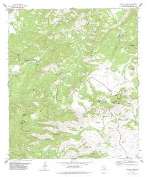 Mount Locke topo map