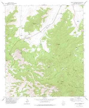 Mount Livermore topo map