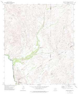 Mesquite Spring topo map