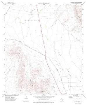Van Horn Wells topo map