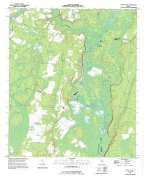 Boons Lake topo map