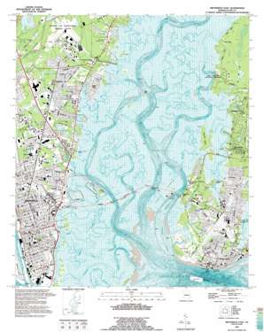 Brunswick East topo map