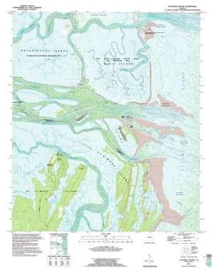 Altamaha Sound topo map