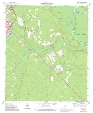 Jesup East topo map