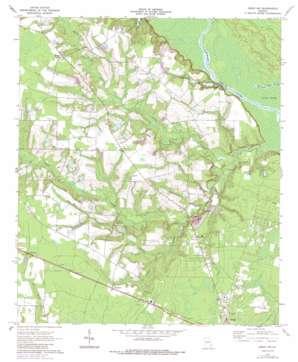 Jesup Nw topo map