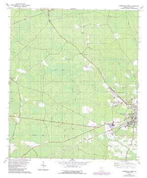 Homerville West topo map