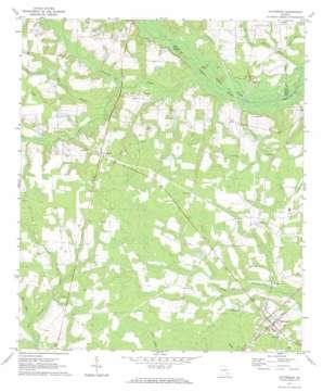 Patterson topo map