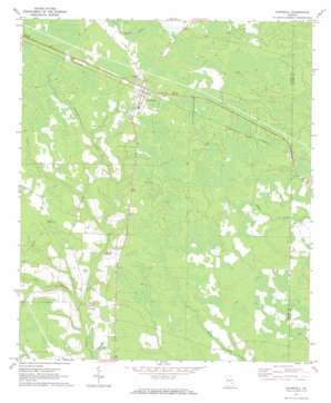Surrency topo map