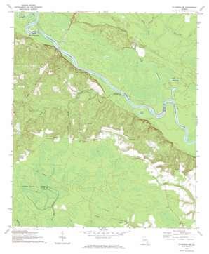 Altamaha Se topo map