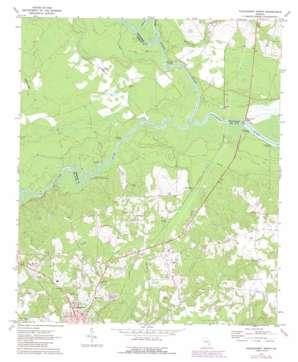 Hazlehurst North topo map