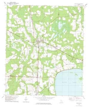 Ray City topo map