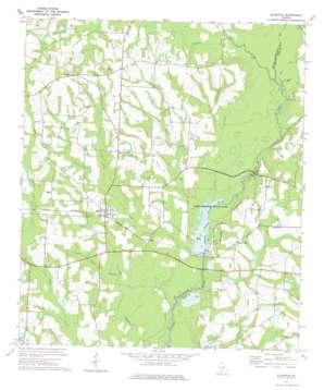 Ellenton topo map