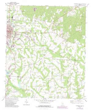 Fitzgerald East topo map
