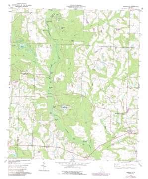 Irwinville topo map