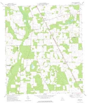 Boykin topo map