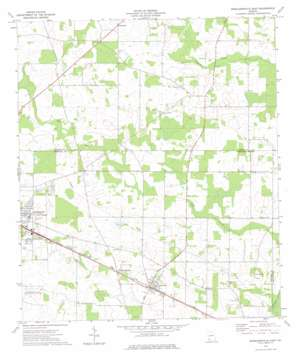 Donalsonville East topo map