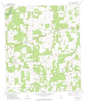 Branchville topo map