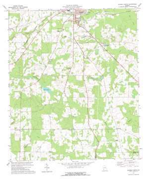 Blakely South topo map