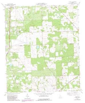 Putney topo map