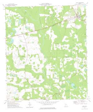 Leary topo map