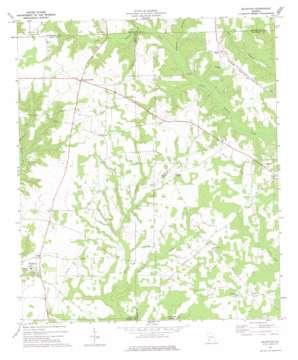 Bluffton topo map