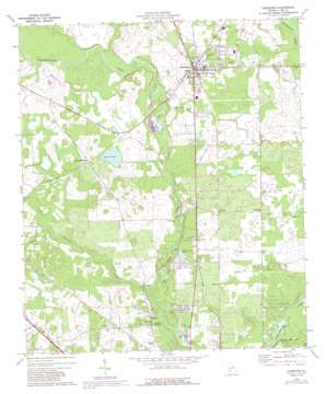 Leesburg topo map