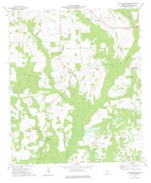Chickasawhatchee topo map
