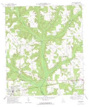 Shellman topo map