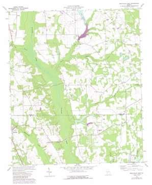 Smithville East topo map