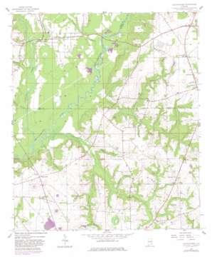 Clayhatchee topo map