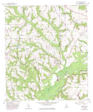 Bellwood topo map