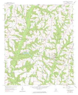 Coffee Springs topo map