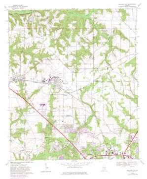 Midland City topo map
