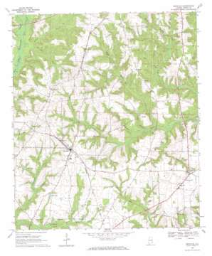Newville topo map