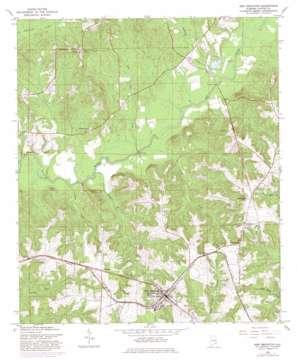 New Brockton topo map