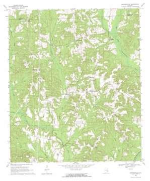 Skipperville topo map