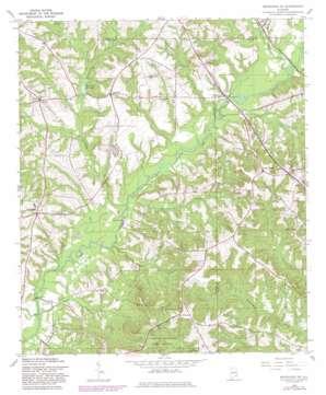 Brundidge Se topo map
