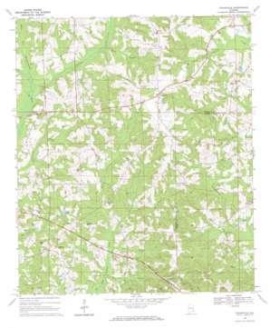 Texasville topo map
