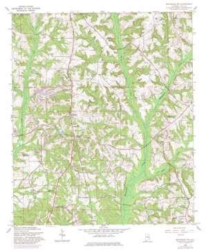Brundidge Nw topo map