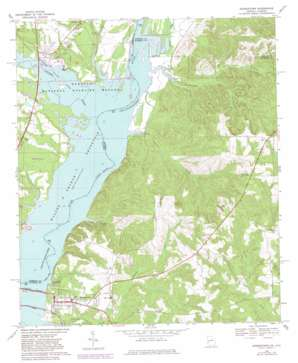 Georgetown topo map