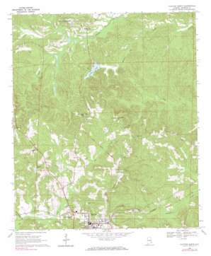 Clayton North topo map