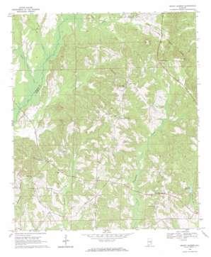 Mount Andrew topo map