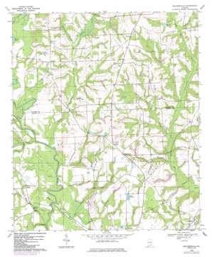 Sellersville topo map