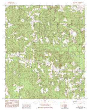 Old Town topo map