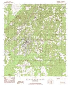 Evergreen topo map