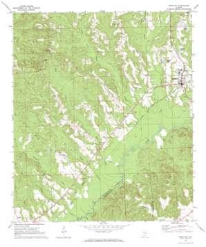 Brantley topo map