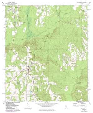 Mckenzie topo map