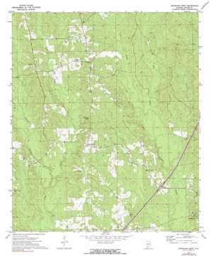 Georgiana West topo map